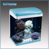 Arc Aquarium Fish Tanks with Blue Pink Black (HL-ATD100)