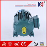 3HP AC Electric (Electrical) Induction Motor with Low Noise