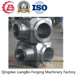 Stainless Steel Ring and Shaped Forgings