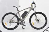 Aluminium Frame 350W Brushless Motor City Electric Bicycle