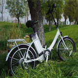 Hot Sale 36V 250W Cheap Folding Electric Bike (RSEB-636)