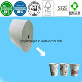 Single/Double Sides Paper for Cold Drinking Cup