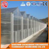Commercial Single-Span Steel Frame PC Sheet Greenhouse