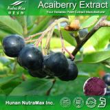 Spray Dried Acai Berry Juice Powder