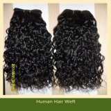 Wholesale Virgin Indian Remy Human Hair Extensions (ZYWEFT-121)
