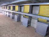 2 Storey Poultry House, Steel Structure Chicken Farm (pH 15020)