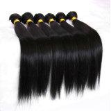 Top Quality Human Hair Extension Straight Virgin Hair (BHF015)