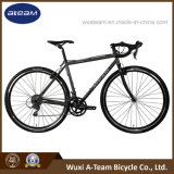 Superlight 2400-16 Speed Crmoly Racing Road Bicycle /Cyclocross Bicycle Viper (CX4)