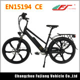 City Design Ebike for Adult From China