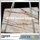 Building Material Golden Dragon Marble Stone for Vanity/Bathroom Countertop