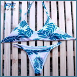 Strap Swimwear Beachwear Thong Bathing Suits