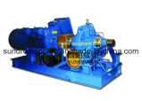 Diesel Engine Split Case Pump ISO9001 Certified