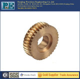 Customized Copper Casting Worm Gear