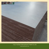 18mm Marine Plywood Black Film Coated Plywood Poplar Core Plywood