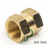 Brass Female Coupling/Connector NPT