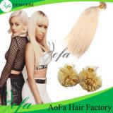 Wholesale Price Brazilian Virgin Free Shipping Human Hair