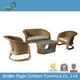 Hot Sale Rattan Outdoor Sofa Set (FP0103)