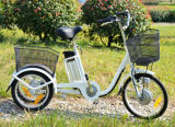 Hot Sell 3 Wheel Electric Bike Electric Trike for Sale