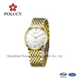 Sapphire Glass and Gold Pating Swiss Quartz Watch