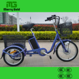 Elder Rider Cargo Electric Tricycle