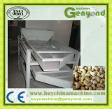 Best Selling Automatic Cashew Nut Processing Plant