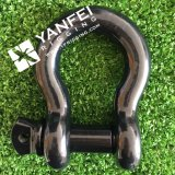 Black Painted Us Type Bow Shackle with Screw Pin