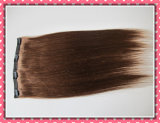 European Straight Human Remy Hair Clip in Extensions Hhci20b