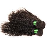 Brazilian Virgin Hair Kinky Curly Brazilian Human Hair Weave Bundles 7A Brazilian Deep Wave Curly Hair Rosa Queen Hair Products