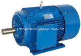 Y2 Series Three-Phase Induction Motor (Y2-63-355) 1.1kw-802-2