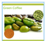Factory Price 5 in 1 Strong Effective Beauty Slimming Coffee