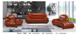 Living Room Furniture Chesterfield Sofa (Y988)