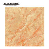 600X600 Promotional Wear-Resistant Rustic Floor Tile (SH656)