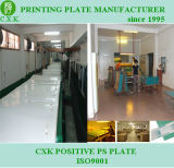 Green Color Conventional PS Printing Plate