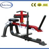 Commercial Sporting Goods / Exercise Equipment / Seated Calf Raise