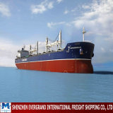 Guangzhou Sea Freight Shipping to Philippines
