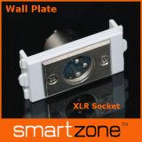 Aviation Plugs Wall Plate, XLR Faceplate (9.1133)