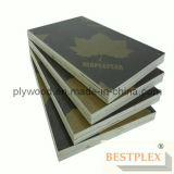 Full Hardwood Core Film Faced Plywood