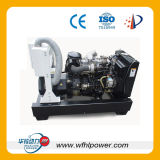 Isuzu Engine and Stamford Alternator Diesel Generator Set