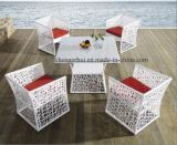 Popular Outdoor Furniture (DH-9662)