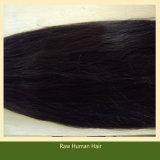South American Hair Natural Human Hair Extensions