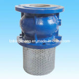 Cast Iron Foot Check Valve Spring Loaded Type Pn16