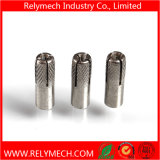 Stud Screw Dowel Screw Expansion Anchor Bolt Wedge Anchor Bolt
