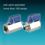 Female-Male Thread Mini Stainless Steel Ball Valve 1000wog