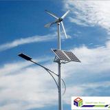 on/ off Grid Wind-Solar Hybrid System (Vertical& Horizontal Wind Turbine)