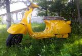 1000W60V Vintage Design Electric Dirt Bike with Disk Brake (EM-006)