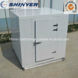 Customized Small Cold Storage Room for Icecream