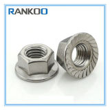 DIN6923 Ss 304 Hexagon Flange Nut