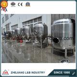 Bls Customized Industrial Beer Fermentation Tank