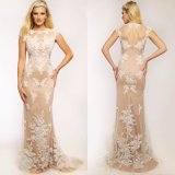 Champagne Lace Tulle Party Prom Gown Sheer-Neck Cocktail Evening Dresses E1600