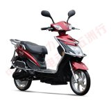 800W Fashionable Drum Brake Brushless Motor Electric Scooter with Pedals